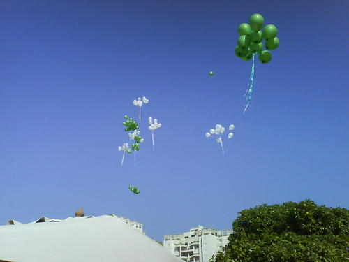 balloons in the fresh air